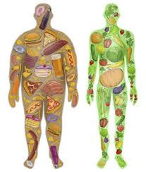 Darmkrebs: Symptome und Warnzeichen - Krebsinformationsdienst