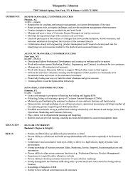 Customer Success Manager Resume Manager Customer Success Resume Samples Velvet Jobs 17