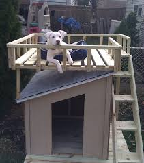 diy doghouse with roof