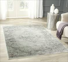 extraordinary 10 x 12 area rugs your home idea