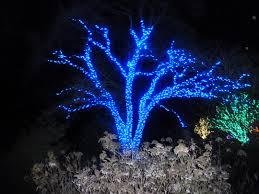 home lighting for led landscape lighting voltage drop and fair led outdoor ground lighting