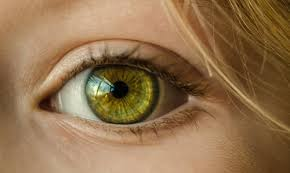 Pics Of Eyes Eye Photos 215 Results Pexels Free Stock Photos