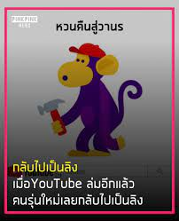 PinkPink News - กลับไปเป็นลิง เมื่อYouTube ล่มอีกแล้ว...