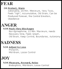 feelings and emotions the essay part two fear anger grief  chart of feelings