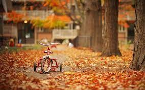 Fall Season wallpapers - HD wallpaper ...