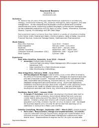 Types Of Resume Awesome Unique It Professional Resume Template Ideas ...