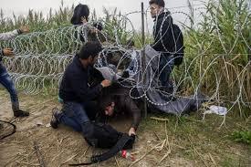 Resultado de imagen para negocio criminal en migrantes europa