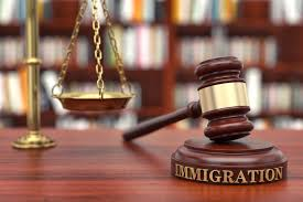 Advice for Choosing th Right Immigration Lawyer