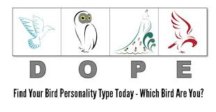 What color represents you best?what color is your true personality? Dope Bird 4 Personality Types Test Printable Online Version
