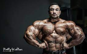 Bodybuilding Wallpapers HD 2018 (64+ ...