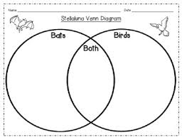 Compare And Contrast Venn Diagram Venn Diagram To Compare Contrast Bats And Birds By Blooming In 1st