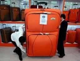Resultado de imagen para maleta para un año