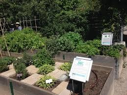 Small Picture 285 best Edible Garden Ideas images on Pinterest Edible garden
