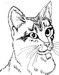 cat coloring page. Plain Page Kitty Cat Coloring Pages Printable Color Intended Page