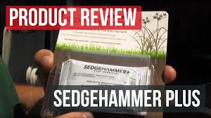 Nutsedge Killer Sedgehammer Plus Herbicide Control Nutsedge In Your Lawn