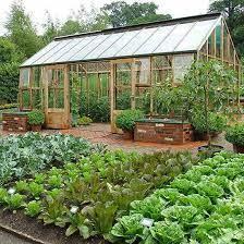 plan a bigger better vegetable garden