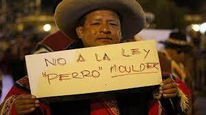 Resultado de imagen para protestas por ley mulder
