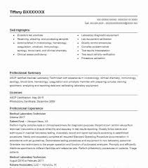 Medical Lab Technician Resume Magnificent Medical Laboratory Technician Resume Example Patient First