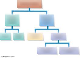 Nervous System Flow Chart The Nervous System Flowchart Diagram Quizlet