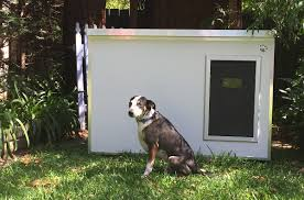 this australian business started as its founders were trying to find a kennel for their ageing dog no matter how many they saw they just couldn t find one