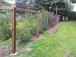 fence is complete garden is popping