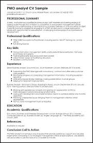 Entry Level Data Analyst Resume Magnificent Business Analyst Resume Summary Awesome Data Analyst Resume Summary
