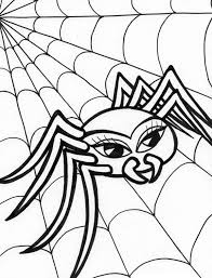 Small Picture Beautiful Spider Walking on Spider Web Coloring Page Color Luna