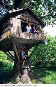Now Thatu0027s A Real Millionaire Play Pad The Luxury Tree Houses How To Build A Treehouse For Adults