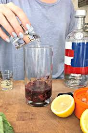 berry vodka tails sugar free