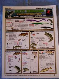 Rigging Chart Tightline Publications Freshwater Bait Rigging Chart