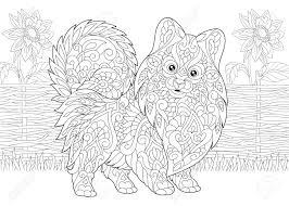 ページを着色大人の塗り絵ポメラニアン スピッツ犬シンボルの 2018 旧正月ヒマワリと田園風景アン