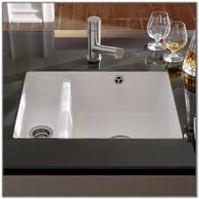 Undermount Porcelain Kitchen Sink Sink And Faucets Home
