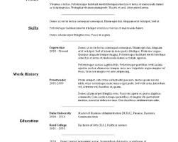resumes hybrid resume template template sample aaaaeroincus remarkable basic resume template timeless design for excel