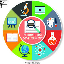 curriculum development tailored curriculum development services by writopedia for