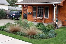 Small Picture Rain Dog Designs Landscaping Services Protecting Puget Sound