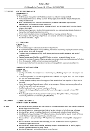 Download PPC Manager Resume Sample as Image file