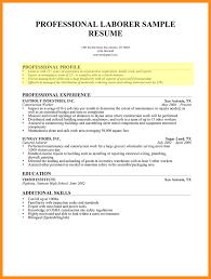 Professional Profile On A Resume Resume Sample Professional Profile