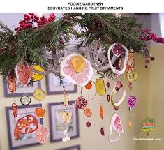 diy dried fruit ornaments use a dehydrator to dry fruit