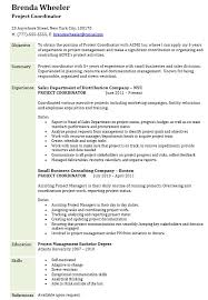 assistant project manager resume 12 assistant project manager job description