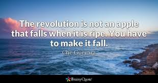 Revolution Quotes Gorgeous Revolution Quotes BrainyQuote