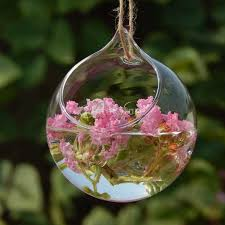 Decorative Hanging Glass Balls Beauteous Ball Globe Shape Clear Hanging Glass Vase Flower Plants Terrarium
