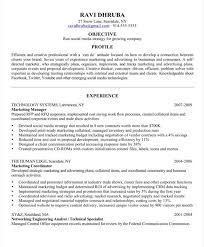New Media Specialist Sample Resume