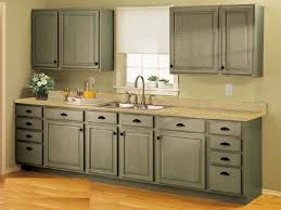 magnificent unfinished kitchen cabinets modern new at cabinet photography sofa decorating ideas