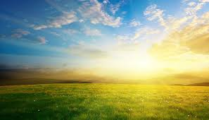 Image result for sunlight images