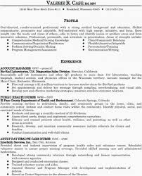 Examples Of Profiles For Resumes Simple Curriculum Vitae Word Format Sample Template Example Examples Of
