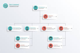 Org Chart Graphic Company Organization Chart By Vekstok On Creativemarket