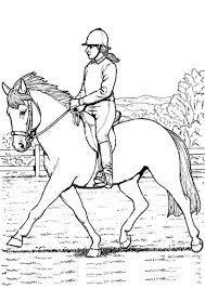 Ein nicht perfekt passender sattel kann bei ihrem pferd sehr schmerzhafte scheuerstellen verursachen! Voltigieren Ausmalbilder Pferde Dressur Pferde Und Reiten Pferde Pferd Und Reiter Schone Pferde Du Kannst Die Pferde Ausmalbilder Kostenlos Drucken Und In Den Farben Deiner Wahl Kolorieren Lavonda Mcdaniel