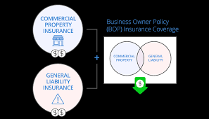 business owners policy bop infographic desktop