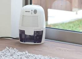 Run a Dehumidifier to Prevent Mold and Mildew
