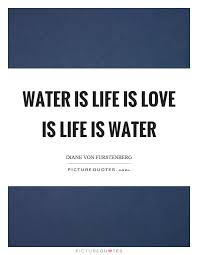 Water Quotes Extraordinary Download Water Is Life Quote Ryancowan Quotes